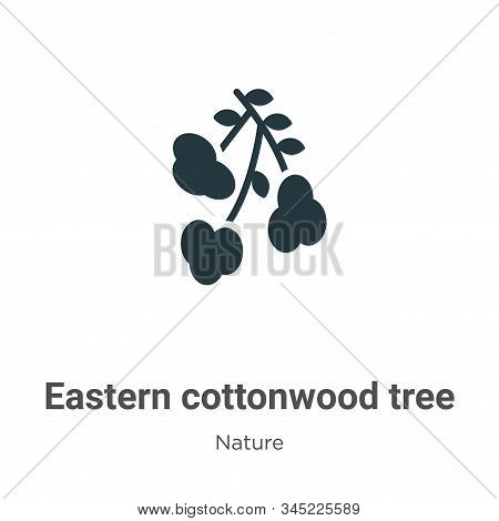 Eastern cottonwood tree icon isolated on white background from nature collection. Eastern cottonwood