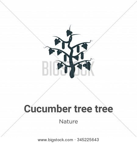 Cucumber tree tree icon isolated on white background from nature collection. Cucumber tree tree icon
