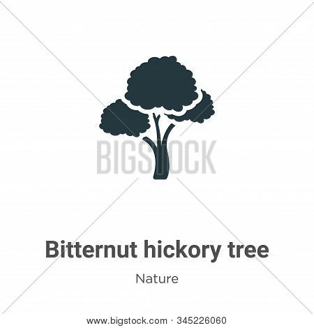 Bitternut hickory tree icon isolated on white background from nature collection. Bitternut hickory t