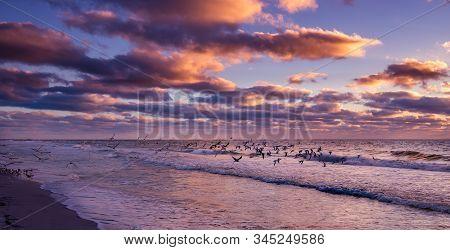 Sunset On A Beach In Sarasota, Florida