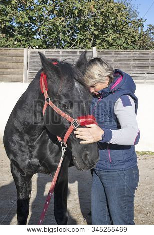 Osteopath And Horse For An Alternative Medicine