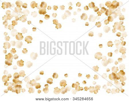 Gold Seashells Vector, Golden Pearl Bivalved Mollusks. Cartoon Scallop, Bivalve Pearl Shell, Marine