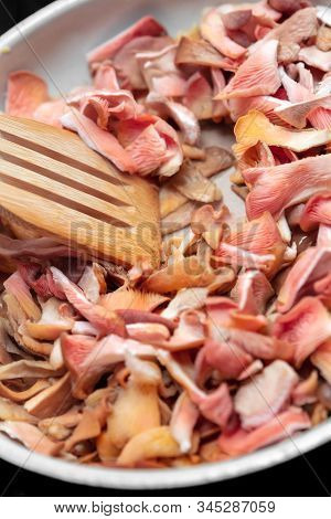 Cooking With Gourmet Fungi, Pink Oyster Mushrooms Roasting In A Kitchen Pan, Closeup