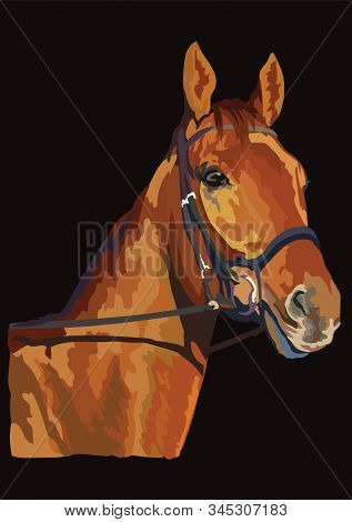 Colorful Horse Portrait With Bridle. Chestnut Horse Head Isolated On Black Background. Vector Colorf