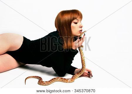 Beautiful Woman In Black Bodywear And Snake. Ginger Model Girl With Fashion Perfect Make Up.