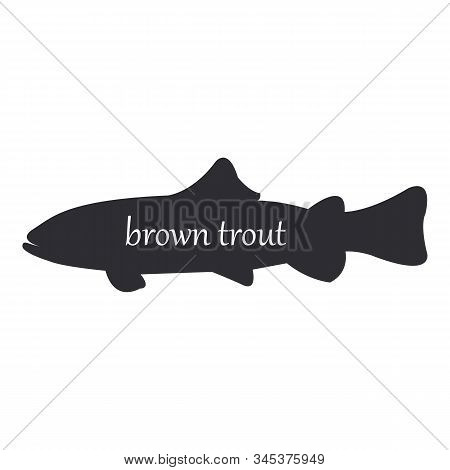 Brown Trout Or Salmo Trutta, Fish Black Silhouette On White Background.