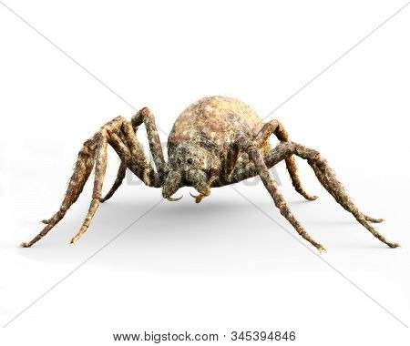 Enormous Plague Ridden Fantasy Spider On A Isolated White Background . 3d Rendering