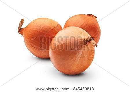 Onion. Three Fresh Organic Onion Bulbs Isolated On A White Background. Organic Products.