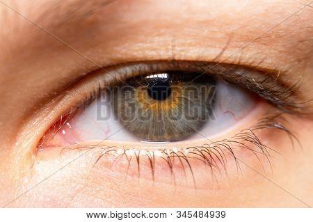Woman Eye Macro Close Up. A Beautiful Insightful Look Womans Eye. Close Up Photo