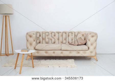 A Beige Sofa With A Decorative Pillow, A Coffee Table And A Lamp In A Spacious White Living Room. Sp