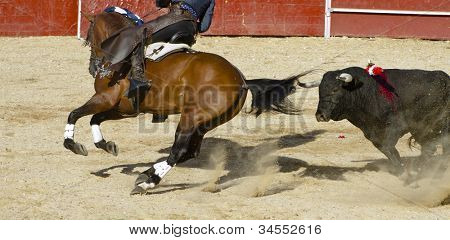Bullfight on horseback. Typical Spanish bullfight. poster