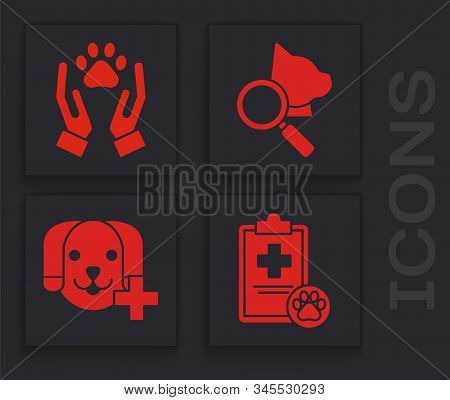 Set Clipboard With Medical Clinical Record Pet, Hands With Animals Footprint, Veterinary Clinic Symb