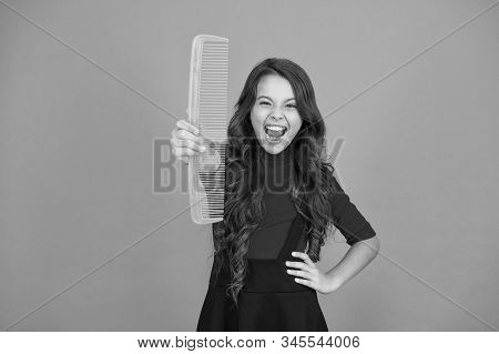 Get Rid Of Annoying Tangles. Large Comb. Girl Long Hair Hold Enormous Comb Close Up. Hairdresser Sal