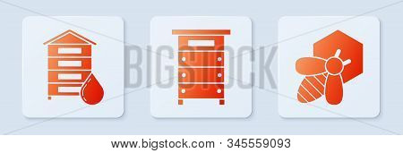 Set Hive For Bees, Hive For Bees And Bee And Honeycomb. White Square Button. Vector