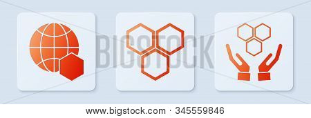 Set Honeycomb, Honeycomb Map Of The World And Honeycomb And Hands. White Square Button. Vector