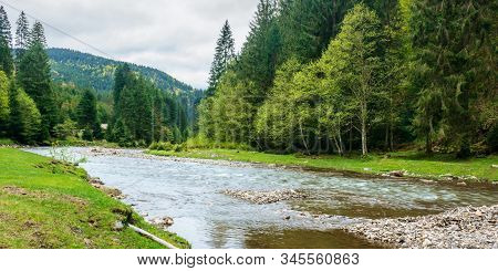 Mountain River In The Forest. Carpathian Landscape In Springtime. Beautiful Nature Scenery On A Clou