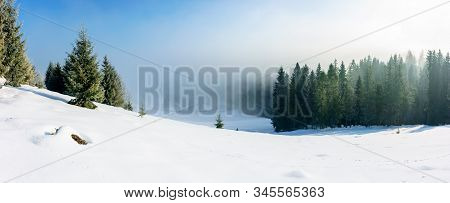 Winter Landscape At Sunrise. Spruce Forest On A Snow Covered Hill In Fog. Sunny Panorama With Blue S