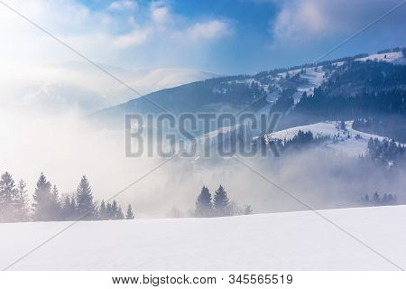 Blizzard In Mountains. Magic Scenery With Clouds And Mist On A Sunny Winter Morning. Trees In Fog On