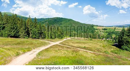 Forested Carpathian Mountains In Summer. Fir Trees On The Grassy Slope. Sunny Weather With Clouds On
