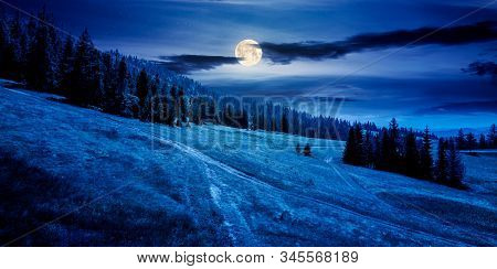 Forested Carpathian Mountains In Summer At Night. Fir Trees On The Grassy Slope. Weather With Clouds