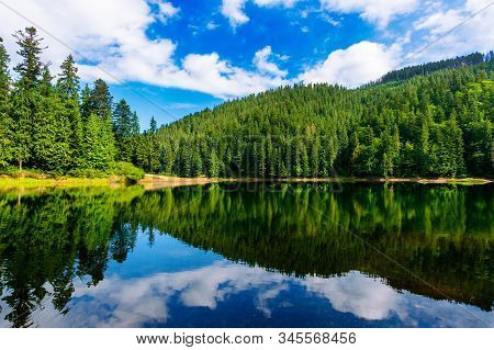 Mountain Lake In Summertime. Great Outdoor Nature Scenery. Coniferous Forest With Tall Trees On The