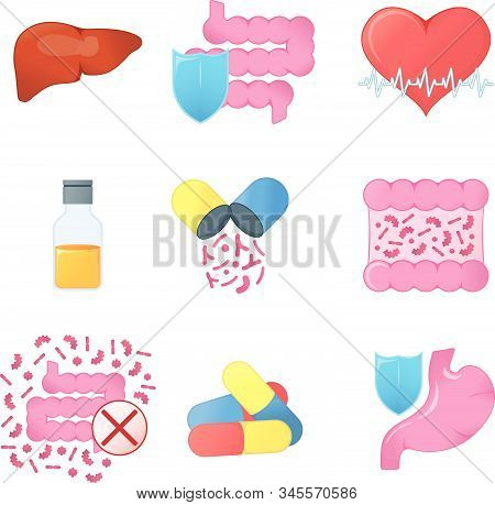 Set Of Gastrointestinal Tract. Concept Icon And Label. Health Research Symbol, Icon And Badge. Carto