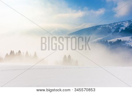 Blizzard In Mountains. Magic Scenery With Clouds And Mist On A Sunny Winter Day. Trees In Fog On A S