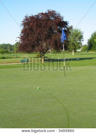 Golf Green Dew