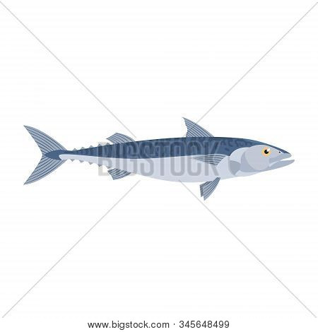 The Mackerel Is Isolated On The White Background.