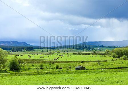landscape of Strathspey Valley, Highlands, Scotland