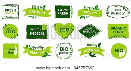 Organic Logo. Vegan Product Labels, Natural Food And Eco Vegetables Badges, Fresh And Healthy Produc