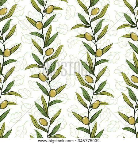 Floral Seamless Pattern With Olive Branches; Vertical Olive Branches With Foliage And Green Olives;