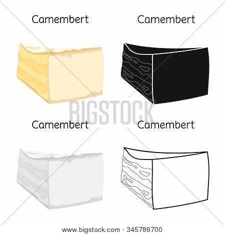 Isolated Object Of Cheese And Maasdam Sign. Web Element Of Cheese And Piece Vector Icon For Stock.