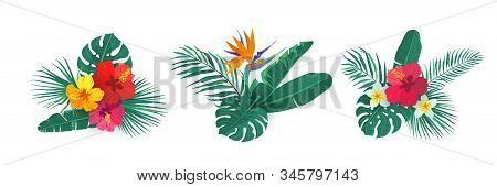 Tropical Hawaii Flower Bouquet Vector Set. Composition With Exotic Plants In Simple Flat Style For S