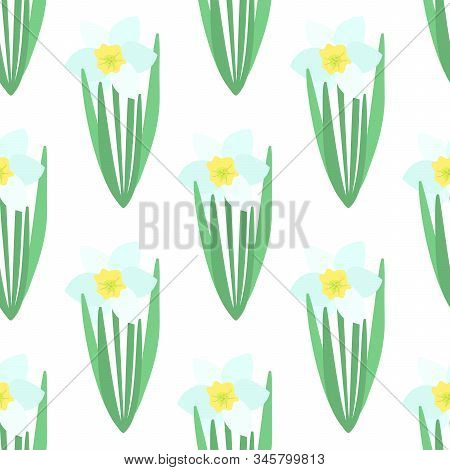 Seamless Pattern. White Narcissus Flower With Green Leaves. Spring Flowers. Hand Drawn Botanical Vec