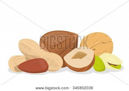 Nut Collection Vector Isolated. Natural Food, Snack Seed With Nutshell. Raw Pistachio And Hazel, Veg