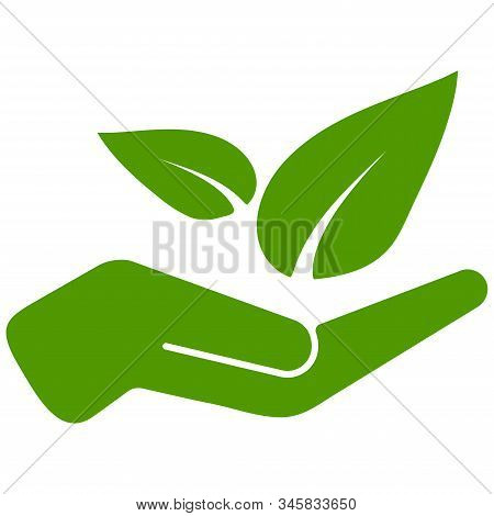 Hand Holds Green Leaves Vector Illustration. Friendly Environment Icon Isolated On White Background.