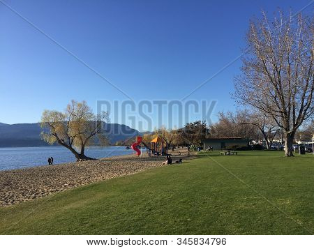 Tall Trees And Playground On Beach With People Sitting On Grass And Standing On Lakeshore.