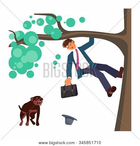 Man Climbed A Tree Fleeing From Attack Huge Aggressive Mongrel Dog. Bad Luck And Stressful Situation
