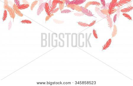 Weightless Pink Flamingo Feathers Vector Background. Bird Wing Plumage Boho Line Art. Decorative Con