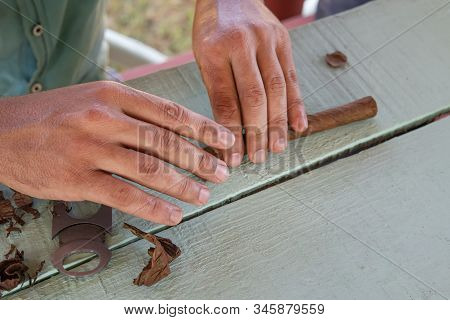 Traditional Process Of Making Cigars In Close-up. A Man Rolls A Tobacco Leaf Into A Cigar. The Valle
