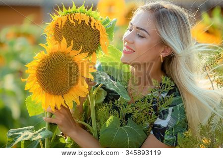 Beautiful Young Woman Posing Near Sun Flowers. Summer Portrait At The Field. Happy Woman In Beauty F