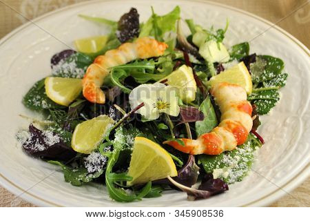 Fresh Salad Organic Natural Product Longevity Gourmet Diet Seafood Plate Gray Background