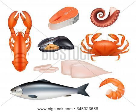 Seafood. Tuna Meal Fishes Shrimps Molluscs Octopus Crab Vector Realistic Natural Products. Fish And