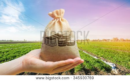 Money Bag On The Background Of Agricultural Crops In The Hand Of The Farmer. Agricultural Startups.