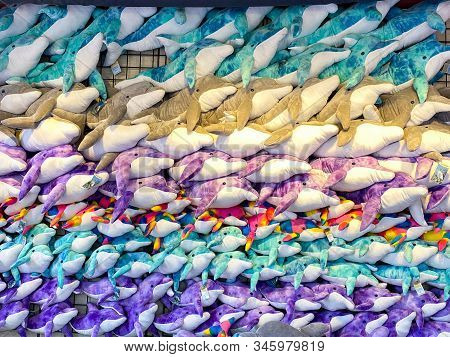 Orlando,fl/usa-1/17/20: A Wall Of Plush Stuffed Animal Dolphins At Seaworld Orlando Ready For A Park
