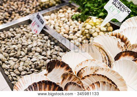 Showcase Of Seafood In The Mercat De La Boqueria, Barcelona