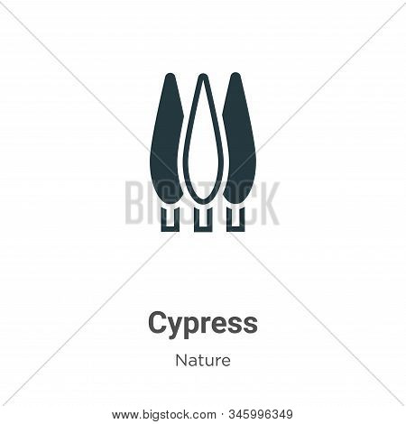Cypress icon isolated on white background from nature collection. Cypress icon trendy and modern Cyp