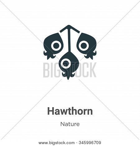 Hawthorn icon isolated on white background from nature collection. Hawthorn icon trendy and modern H