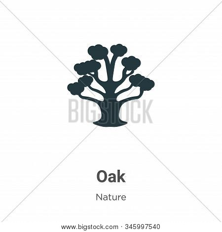 Oak icon isolated on white background from nature collection. Oak icon trendy and modern Oak symbol